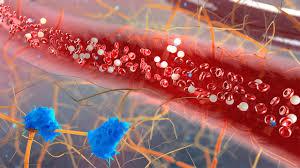 Tratamiento continuo con azacitidina después de la  primera respuesta mejora la calidad de respuesta en pacientes con Síndrome mielodisplásico de alto riesgo