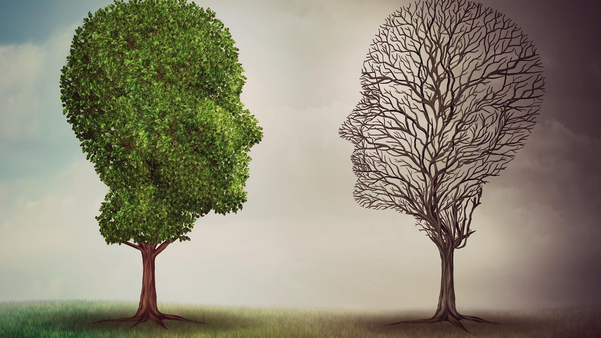 Trastorno Bipolar II - Frecuente, Válido y Confiable